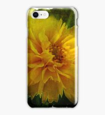 Coreopsis iPhone Case/Skin