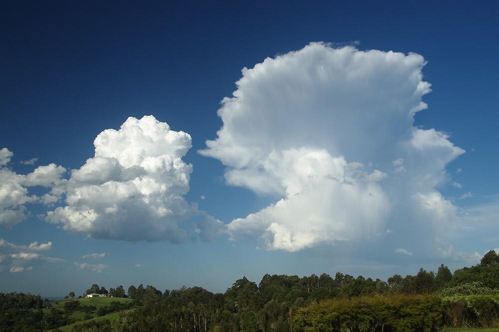 Large cumulus clouds at McLeans Ridges by Michael Bath