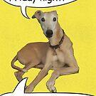Home Alone On A Friday Night Dog by snacksbuddy