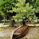 Boat among the trees by Graphxpro
