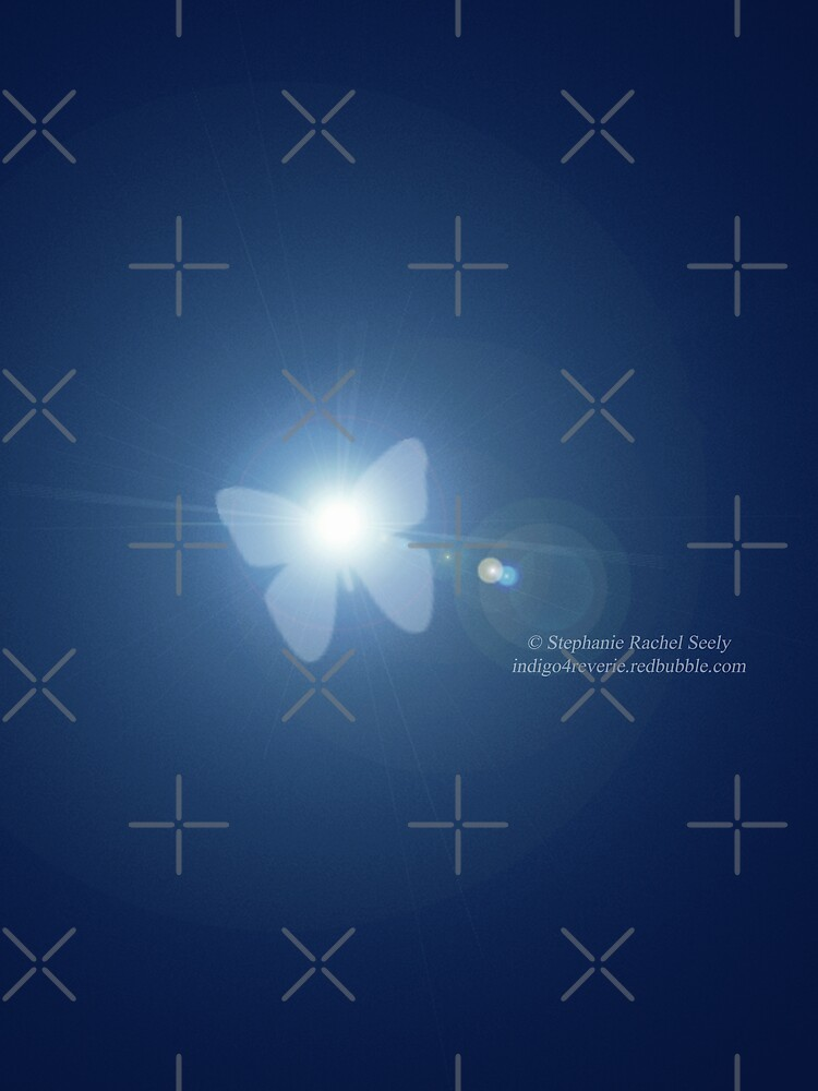 Butterfly Caught In A Moonbeam by Stephanie Rachel Seely