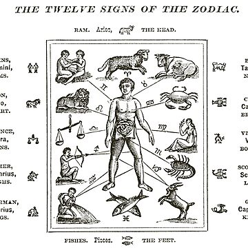 1890 The Twelve Signs of the Zodiac by historicimage