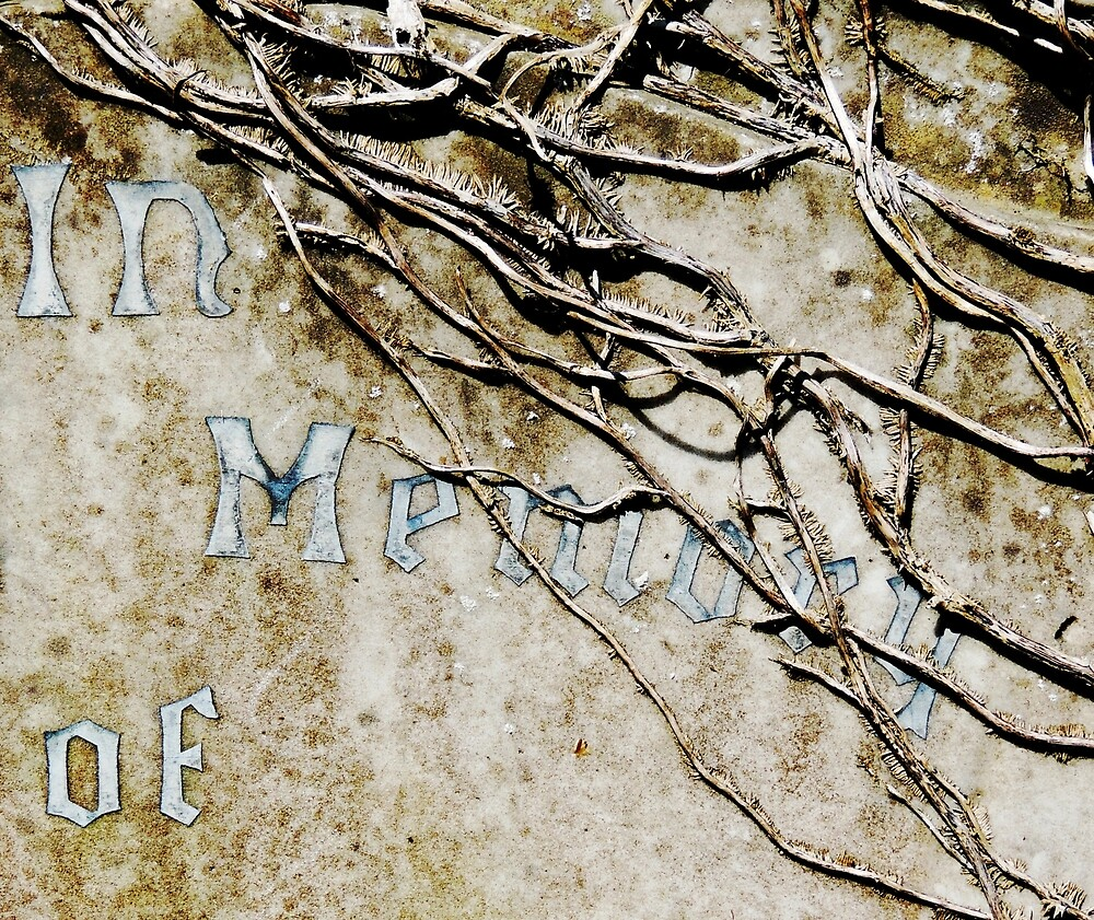 In Memory of... by Alexandra Lavizzari