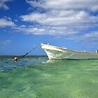 Pristine Tongan Waters by Ran Richards