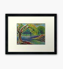 Irvine Park Lake  Framed Print