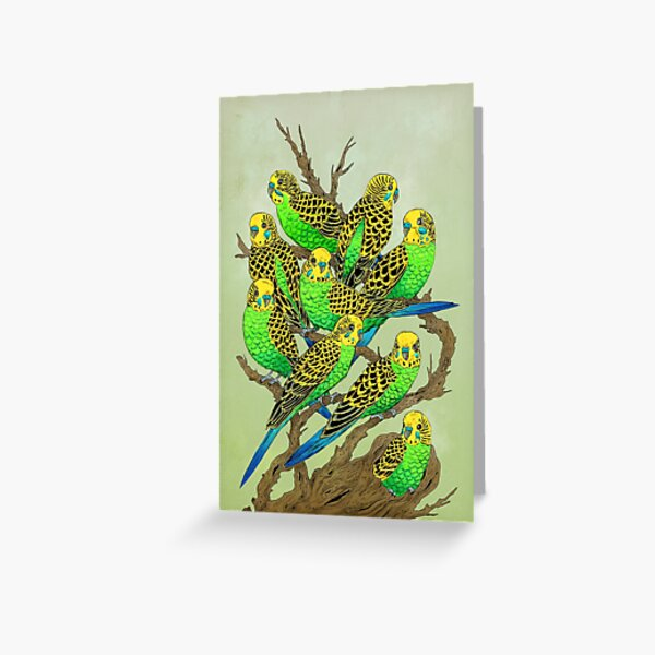 Green and Gold Budgies Greeting Card