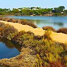 Quinta do Lago. Ria Formosa. Algarve, Portugal. by terezadelpilar ~ art & architecture