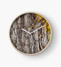 Autumn trees Clock