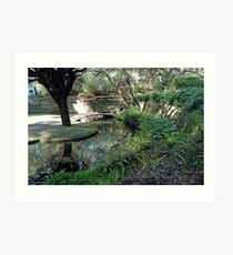Sunken Garden, University of Western Australia Art Print