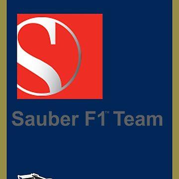 Sauber F1 Team by F1Dynamics
