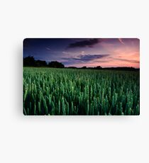 Summer Promise Canvas Print