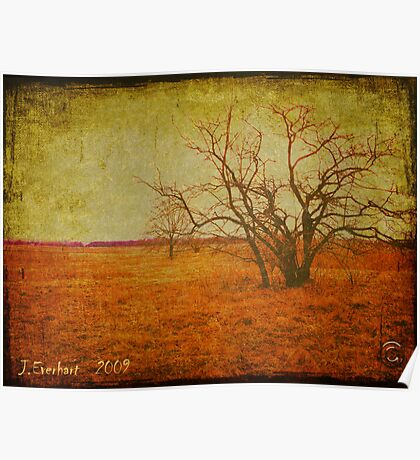 The Red Grass Fields of Spring Poster