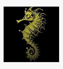 Sea horse Photographic Print