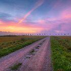 Morning's Way by Veikko  Suikkanen