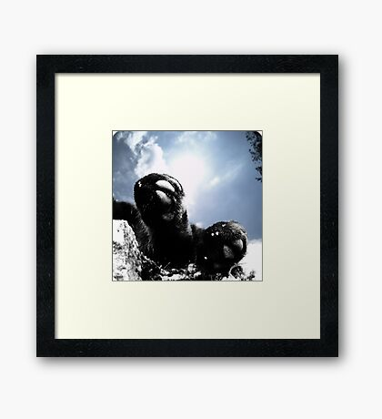 Tiny black feet Framed Print