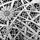 278 - HEDGE FLOWER DESIGN - DAVE EDWARDS - INK - 2018 by BLYTHART