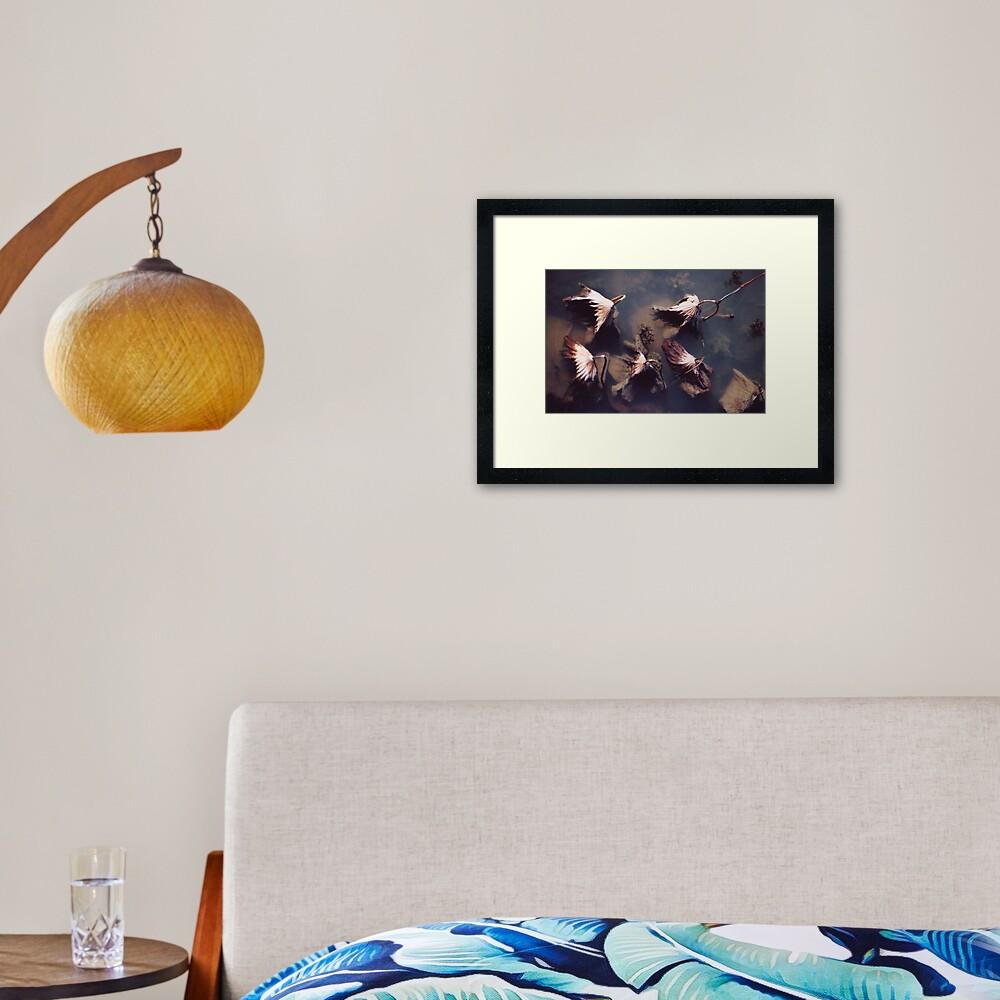River Lotus Framed Art Print