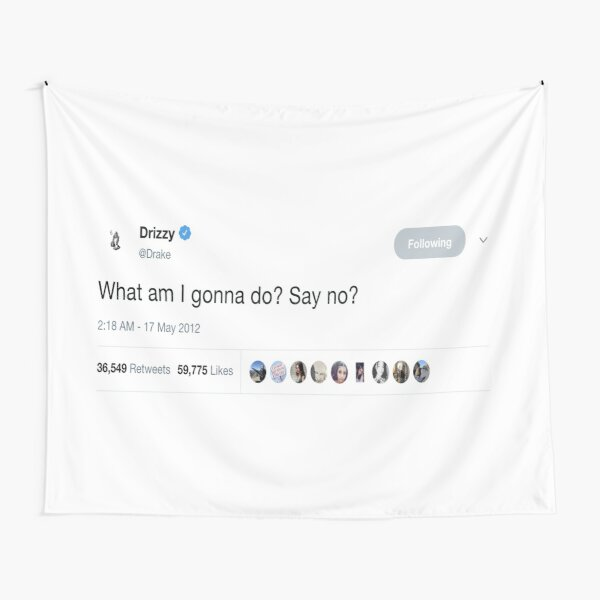"Drake - ""What am I gonna do? Say No?"" Tweet Tapestry"