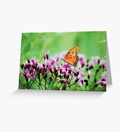 BUTERFLY Greeting Card