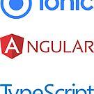 «ionic angular typescript set» de yourgeekside