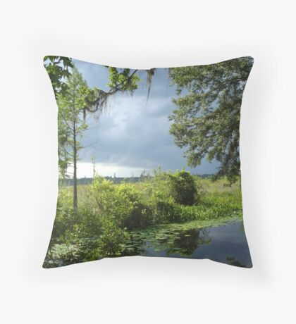 Storm on its way... Throw Pillow