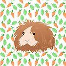 Guinea Pig  by JustTheBeginning-x (Tori)