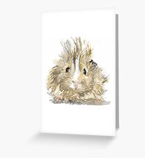 Fuzzy guineapig watercolour Greeting Card