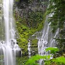 Base of Upper Proxy Falls by Chappy