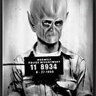 The Alien by Richard  Gerhard