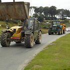 Dartmoor Traffic by lezvee