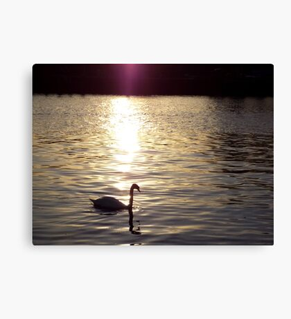Sunset on the River Itchen Canvas Print