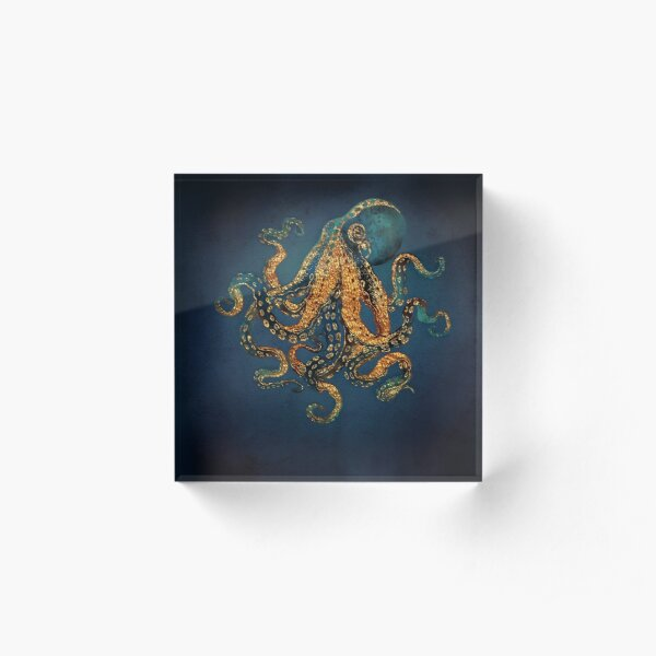 Underwater Dream IV Acrylic Block