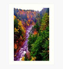 Autumn Blaze Art Print