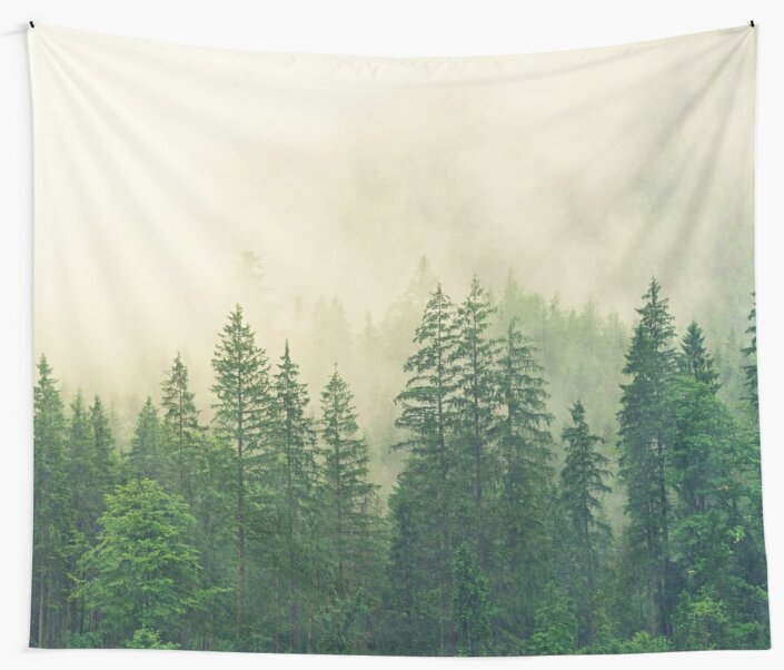Foggy Mountain Forest by XandDot