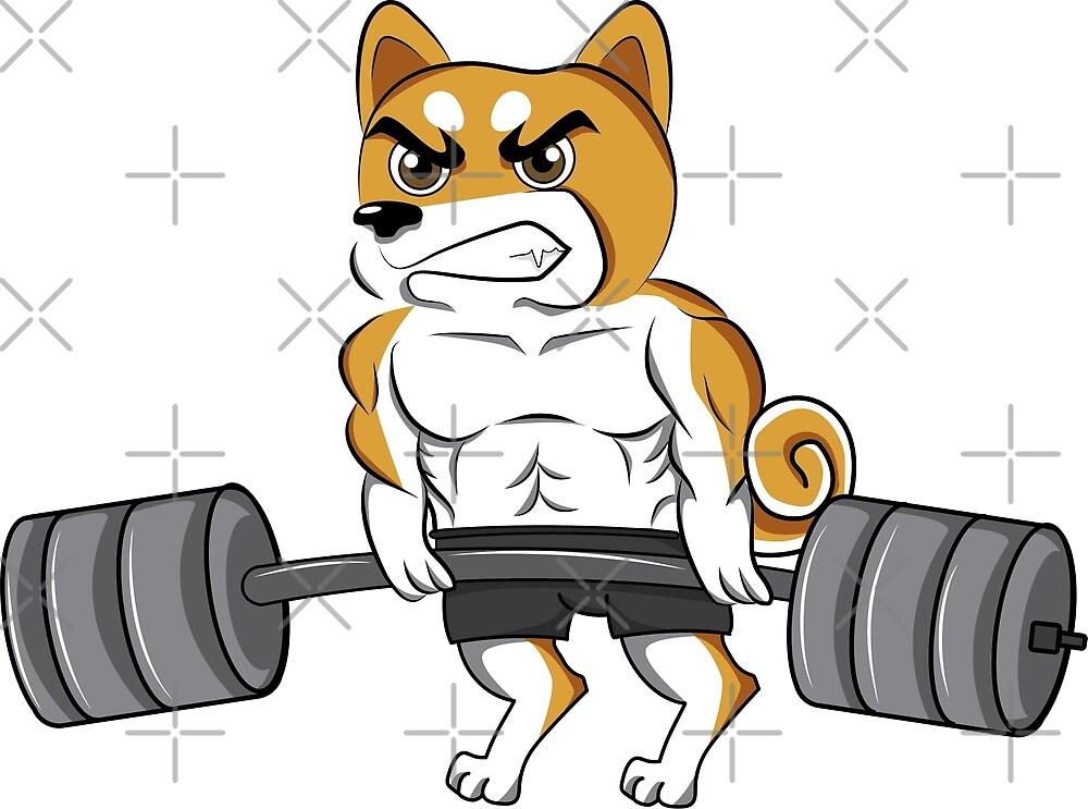 Funny Shiba Inu Weightlifting Bodybuilding by ilovepaws
