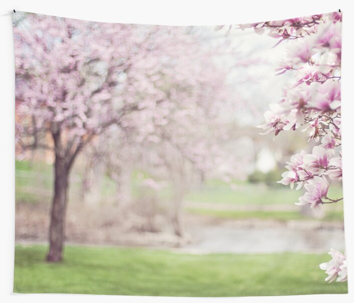 Magnolia Trees Flowers by XandDot