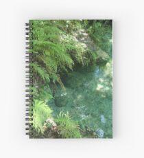 The Blue Spring Spiral Notebook