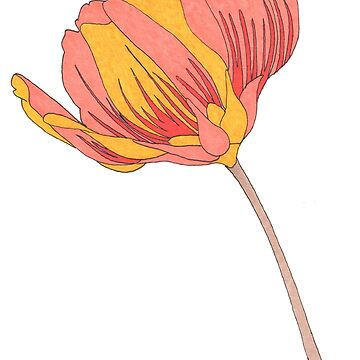 Colorful Tulip Art  by Surrealist1