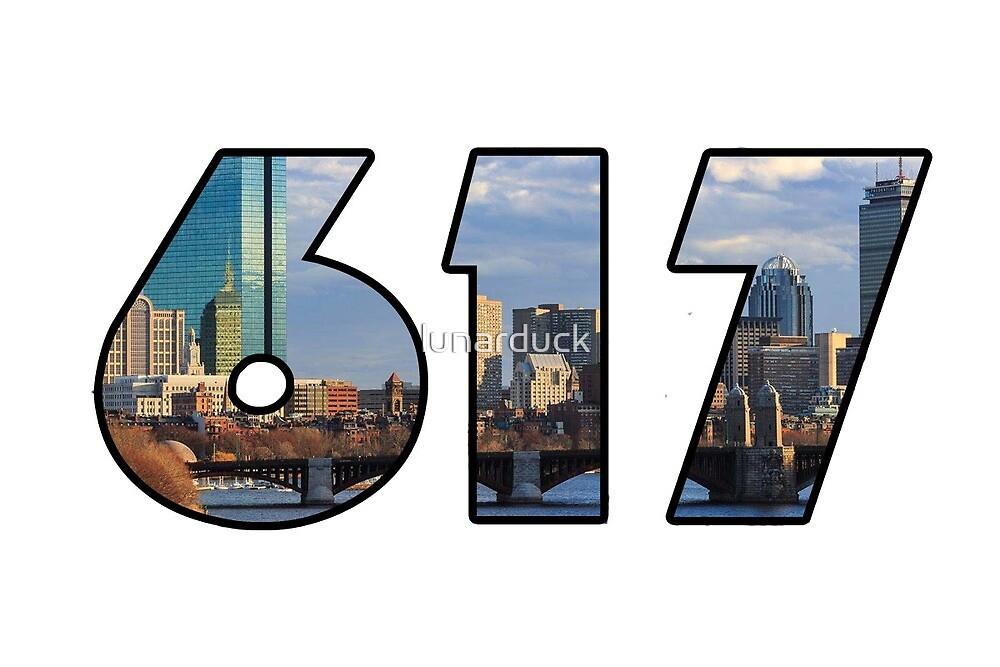 Boston Area Code Skyline  by lunarduck