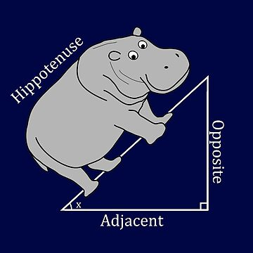 Hippotenuse - Funny Math by bethcentral