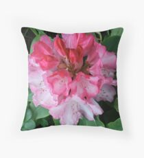 Pink Rhododendrons Adorning Vancouver Throw Pillow