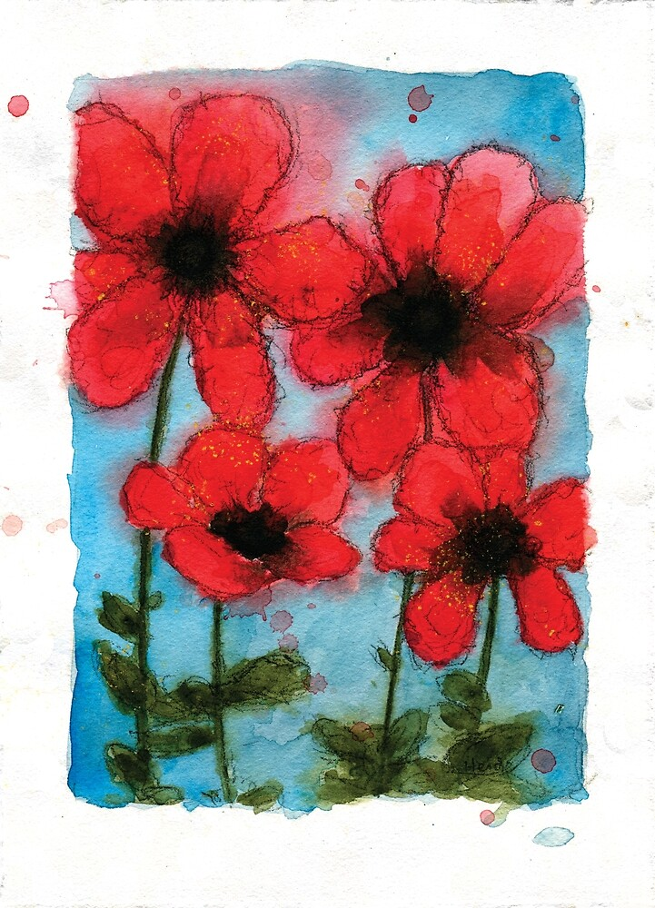 Poppies by HeidiHoHo