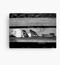 Sparrows at Tea-Time Canvas Print