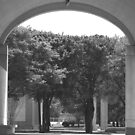 Kimbell Art Museum Arch by redwave