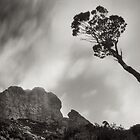 Federation Peak, Tasmania by Andrew Smyth