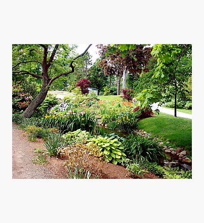 Halifax Public Gardens Photographic Print