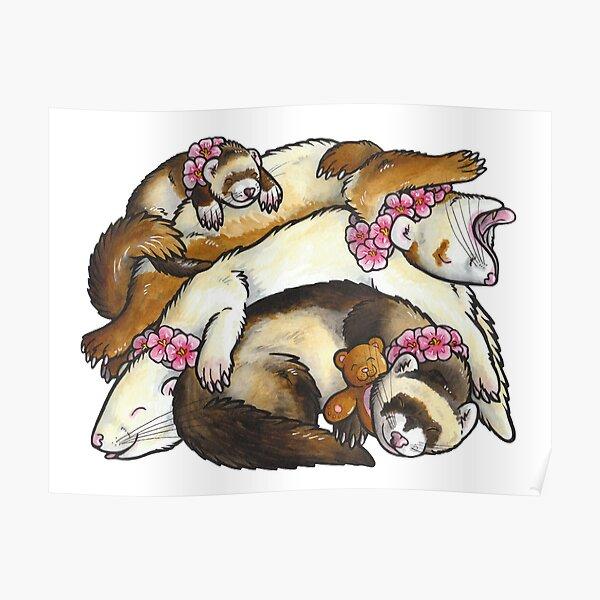Sleeping ferret pile Poster