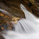 Goin' with the Flow by Stephen Beattie