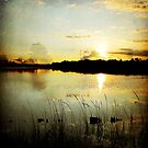 A Beautiful Morning by Jonicool