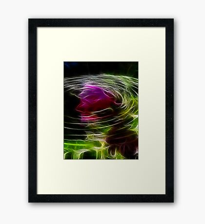 Rose Ripples Framed Print